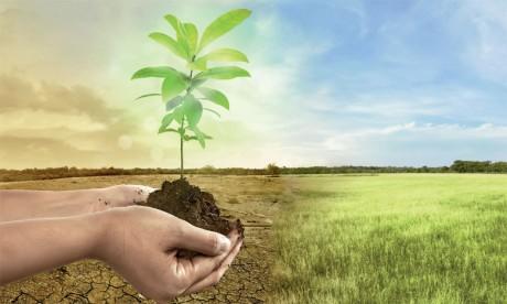 Le Maroc a lancé différents projets dont le Programme national d'économie d'eau en irrigation qui cible l'atténuation  de la contrainte hydrique et une gestion conservatoire et durable des ressources en eau destinées à l'agriculture irriguée.