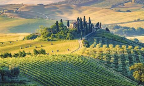 L'Italie, troisième pays agricole de l'Union européenne, est l'invité d'honneur de la 12e édition du Salon international  de l'agriculture au Maroc.