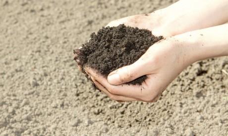 Les technologies vertes contribuent à préserver 150.000 kilomètres carrés de terres par an