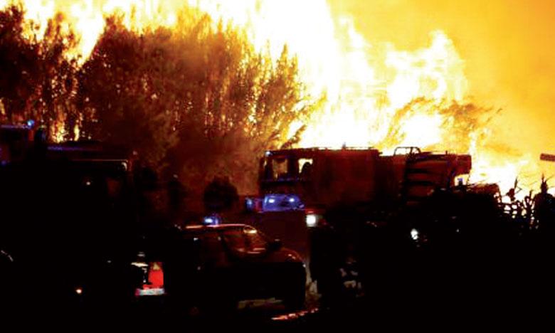 Le sud de la France en proie  à des incendies attisés par le vent