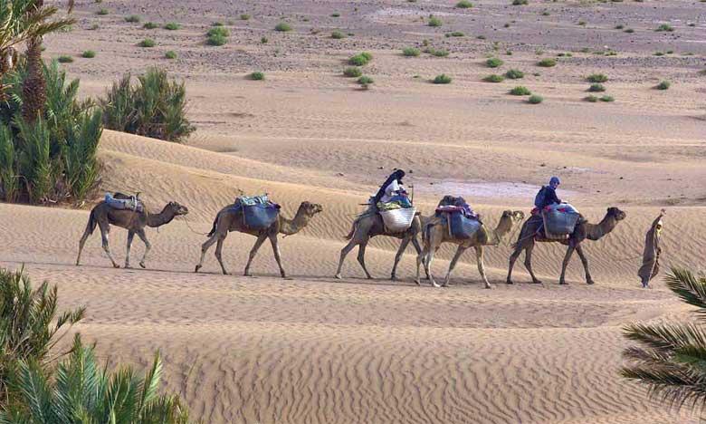 Le Maroc célèbre aujourd'hui la Journée mondiale du tourisme durable