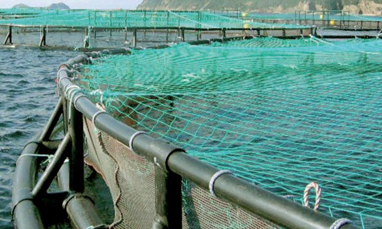 Les projets retenus doivent générer 78.000 tonnes de produits aquacoles.