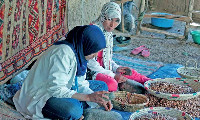 Au sein de ces coopératives féminines marocaines, 43% travaillent dans l'artisanat, 33% dans l'agriculture, 12% dans l'argane.  Ph. DR