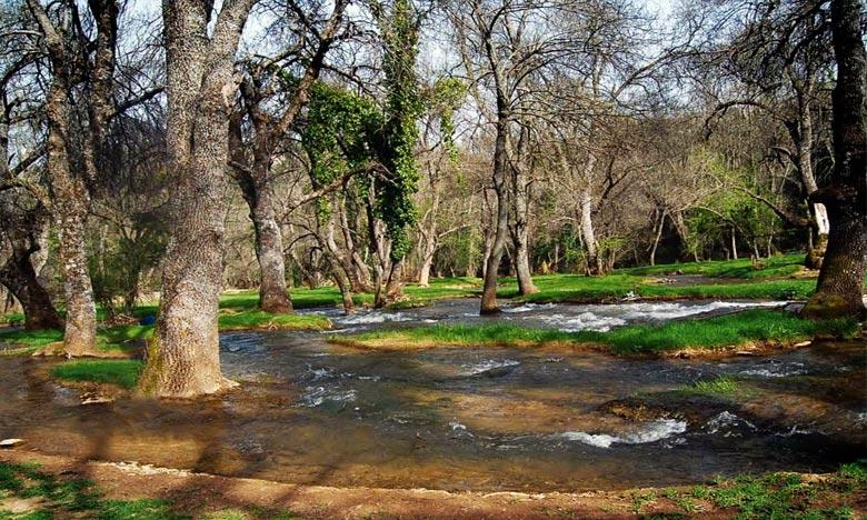 BMCE Bank of Africa, l'AFD et la BEI s'allient pour préserver les ressources en eau