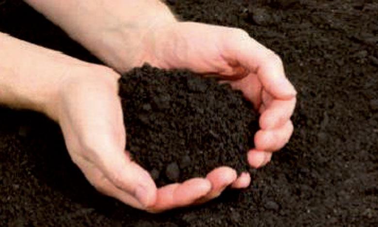 La FAO a lancé la carte la plus complète  au monde des stocks de carbone dans le sol