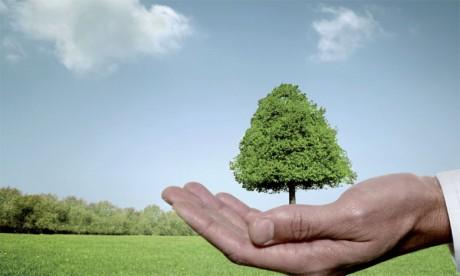 Première rencontre sur le droit d'accès  à l'information environnementale