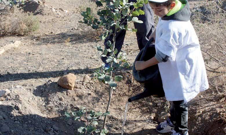 Plantation de 3.500 arbres dans les écoles d'Ouezzane