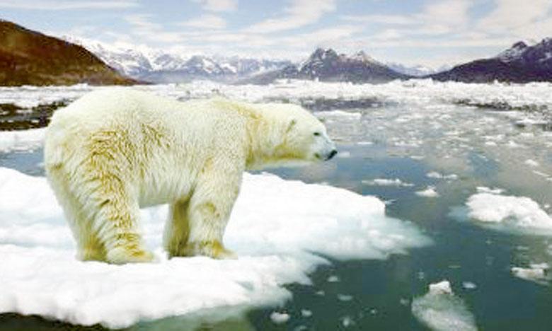 Sauf action urgente, la Terre  aura gagné 1,5°C dès 2040