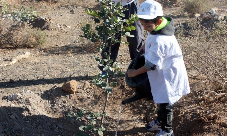 Plantation de 3.500 arbres dans les écoles de Ouezzane