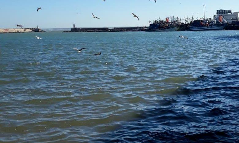 Le Forum sera l'occasion de découvrir les initiatives citoyennes pour la préservation des écosystèmes marins et côtiers, qu'elles soient maritimes, littorales, terrestres, mais aussi numériques. Ph : DR
