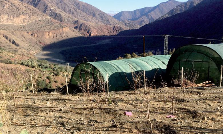 La Fondation Coca-Cola pour l'Afrique lance un nouveau programme d'optimisation de l'irrigation dans le Haut Atlas