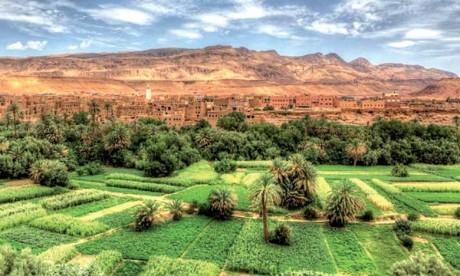 Un CREA pour la région Draa-Tafilalet