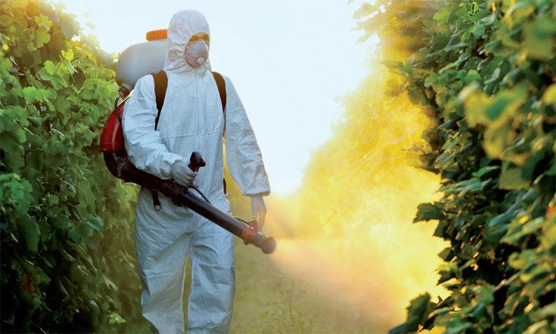 L'objectif de la FAO et de l'ONSSA est la mise en place d'une gestion écologiquement rationnelle  des produits chimiques et de l'ensemble des déchets tout au long de leur cycle de vie. Ph. DR