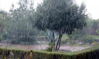 Fortes rafales de vent et averses orageuses mercredi et jeudi