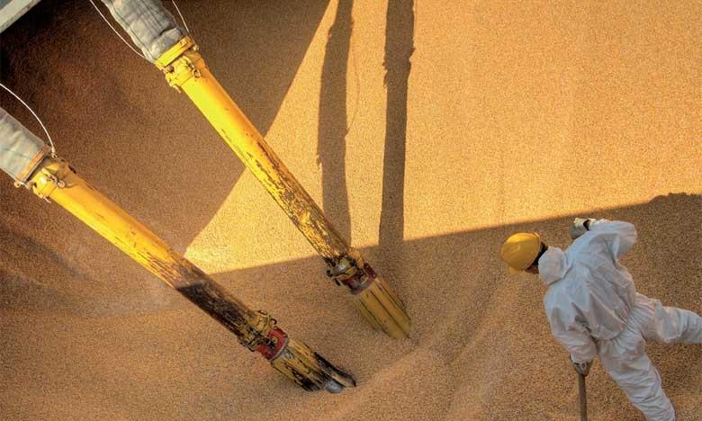 Cette opération d'approvisionnement des minoteries industrielles concerne le blé tendre destiné à la fabrication des farines subventionnées. Ph. DR