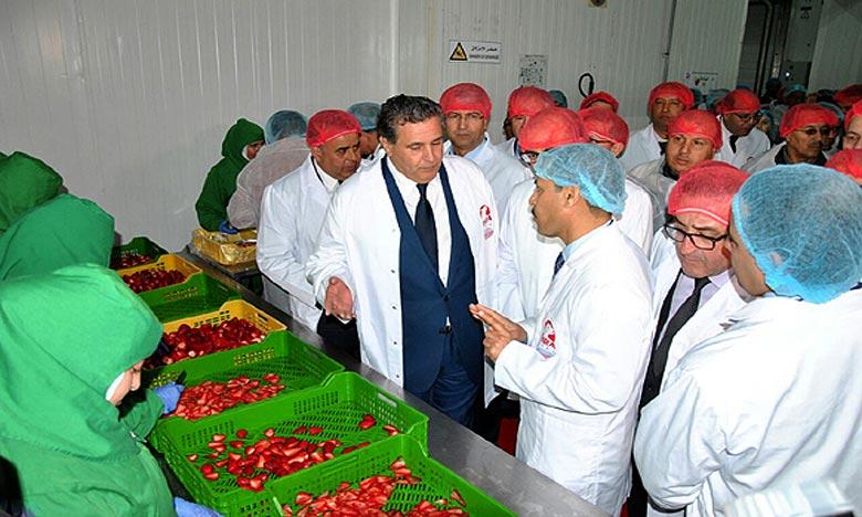 Aziz Akhannouch prévoit un avenir prometteur pour la filière des fruits rouges