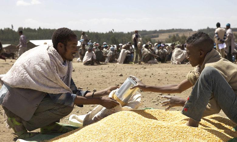 Le nombre de personnes souffrant de famine a augmenté de 11 millions en une année