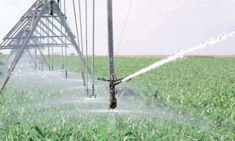 Le réseau marocain de l'irrigation voit le jour
