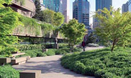 Les arbres réduisent l'empreinte  écologique de la ville