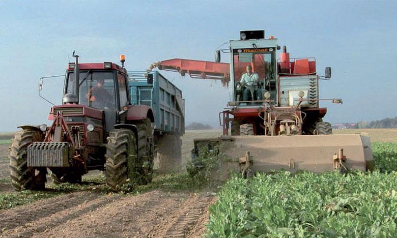 Le projet est piloté par la direction de développement des filières de production, relevant du ministère de l'Agriculture.