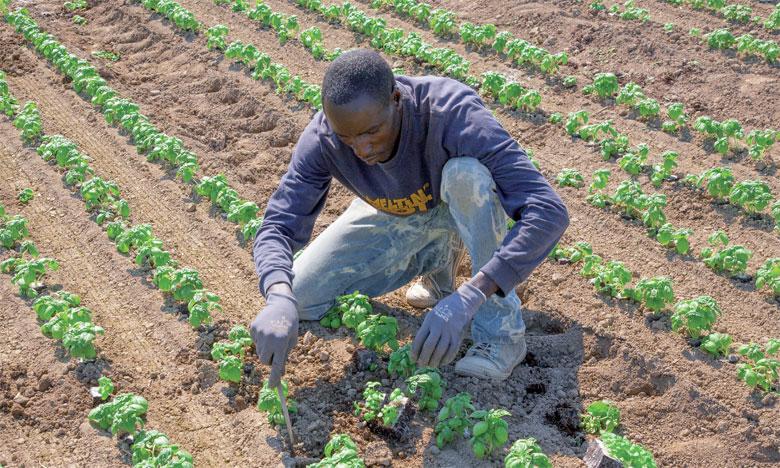 L'initiative favorise la mise en place de projets concrets pour améliorer la gestion des sols, la maîtrise de l'eau agricole ainsi que la gestion des risques climatiques. Ph. Fotolia