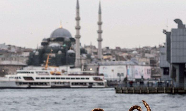 La Turquie en tête  des pays du G20