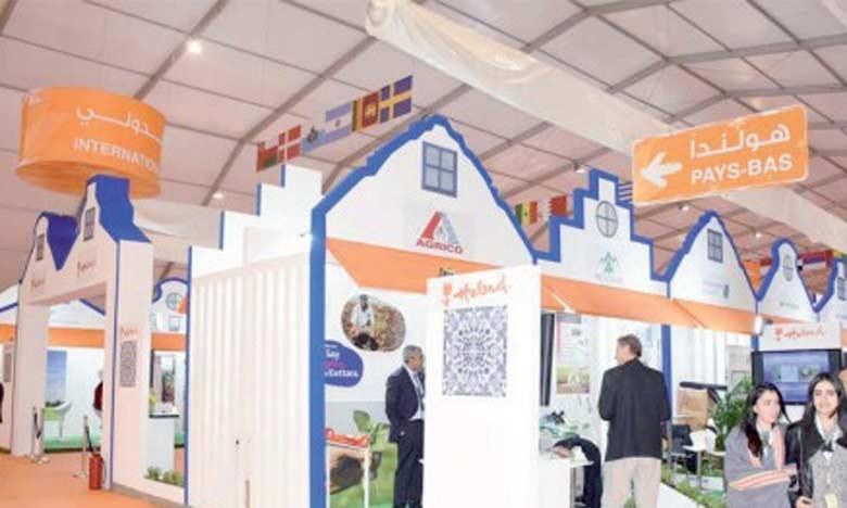 L'agriculture, l'élevage et l'agro-industrie au cœur de rencontres d'affaires  maroco-hollandaises