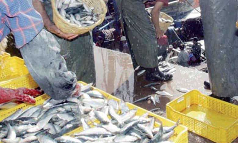 Le marché de gros au poisson de Tamesna mis en service aujourd'hui