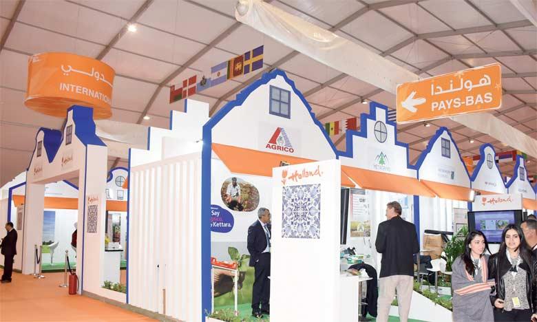 Les Pays-Bas offrent leur expertise dans l'agro-logistique