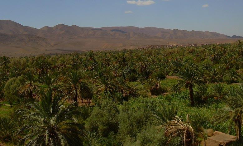 Le forum de Zagora vise engager le débat sur la vulnérabilité des écosystèmes oasiens aux manifestations des évènements extrêmes du CC et les opportunités à saisir par les oasis dans le cadre des mécanismes financiers du processus des variations climatiques. Ph : DR