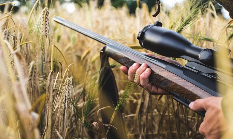 Découverte de la plus ancienne arme de chasse composite au sud-est de la France