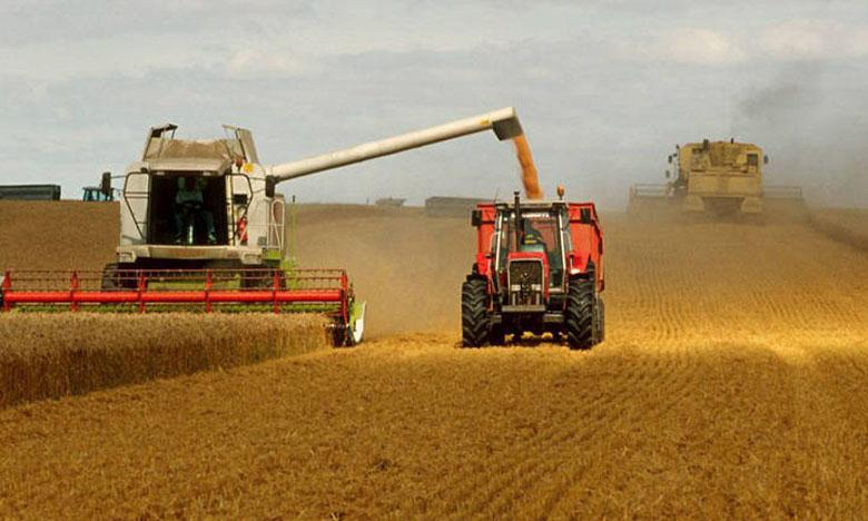 Le prix de référence du blé rendu moulin fixé à 280 DH/quintal