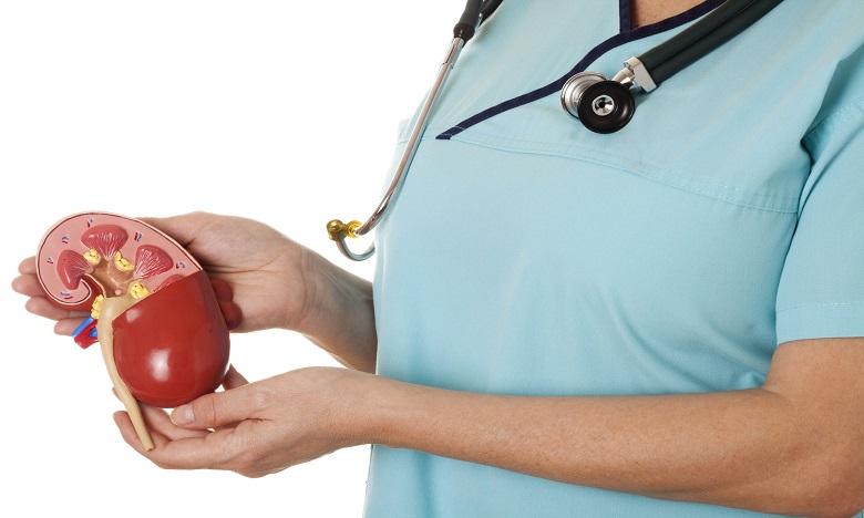 L'association Reins lance une campagne de sensibilisation au don d'organes