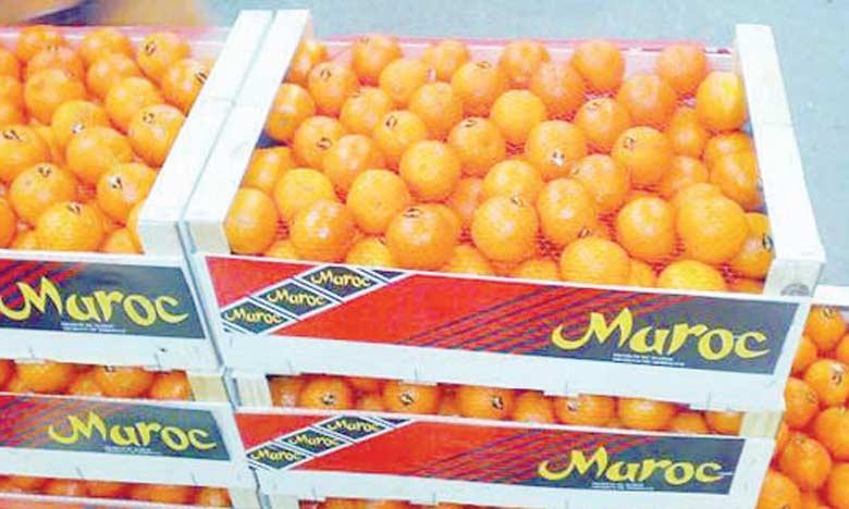 La délégation irlandaise a clairement exprimé son intérêt pour les fruits et légumes marocains, notamment les agrumes.
