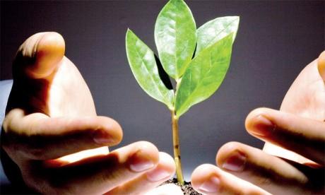 Le mois d'avril a été marqué par une accélération des immatriculations de micro-entrepreneurs qui ont augmenté de 1,4% à 24.310.
