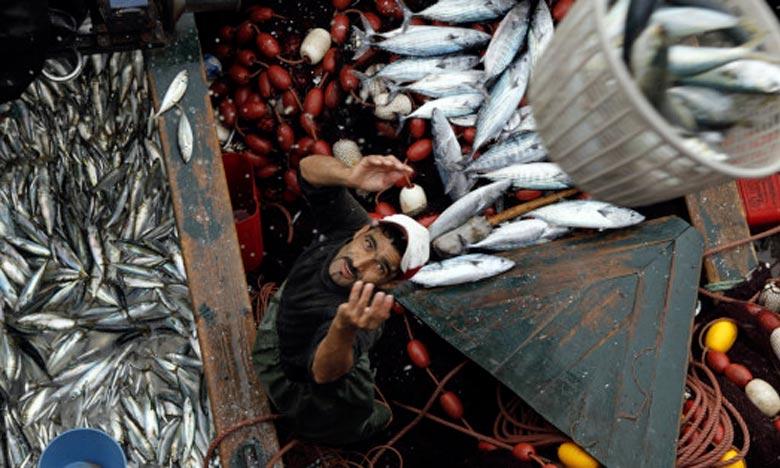 Les opérateurs marocains prospectent le marché russe