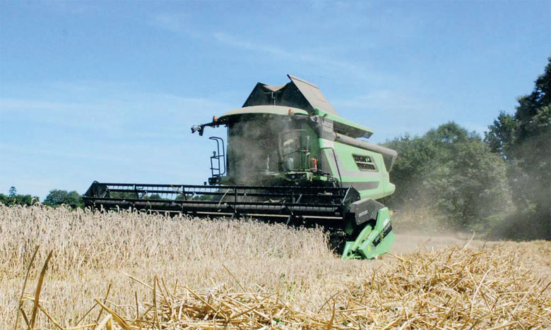 L'indice FAO des prix des céréales a enregistré une hausse de 1,7% par rapport à mars.