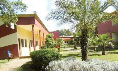 L'université au cœur du développement local