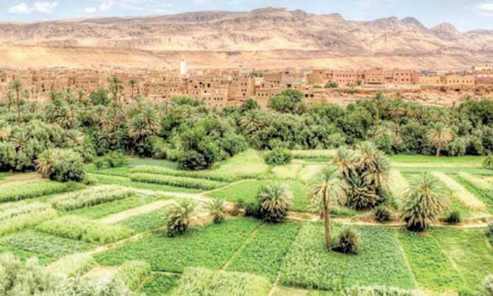 4,5 millions de DH pour doter le Souss-Massa d'un schéma d'aménagement
