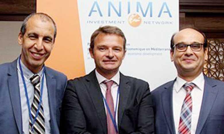 Le Maroc décroche la présidence de l'ANIMA pour 2019-2021