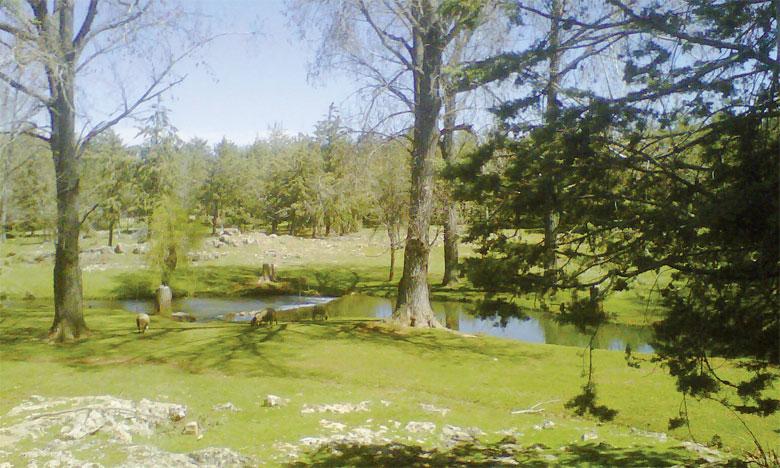 Lors de l'Université de la nature d'Ifrane, il sera question de la conservation et valorisation de la biodiversité et de la mise en œuvre des projets  environnementaux. Ph. DR