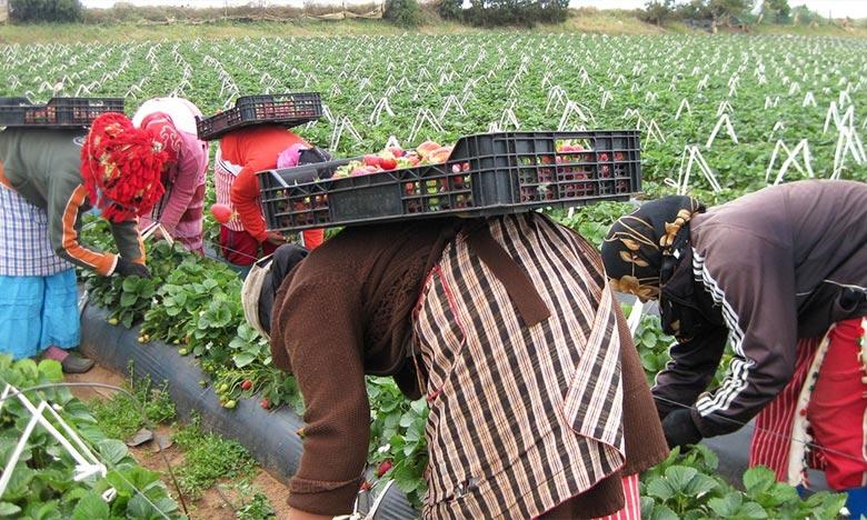 Le ministre évoque le système de «médiatrices» chargées du suivi des conditions des travailleurs sur place et la mise à la disposition des ouvrières d'une ligne verte pour contact ces intermédiaires en cas de besoin. Ph : DR