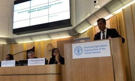 Abdeladim Lhafi, haut commissaire aux Eaux et forêts et à la lutte contre la désertification, présentant la stratégie2015-2024  de valorisation durable des forêts. Ph. DR