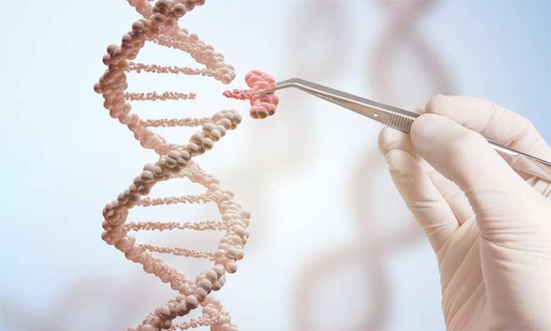 Cette étude montre que des traitements adaptés aux mutations génétiques des tumeurs chez  des patients souffrant d'un cancer avancé améliorent la survie.