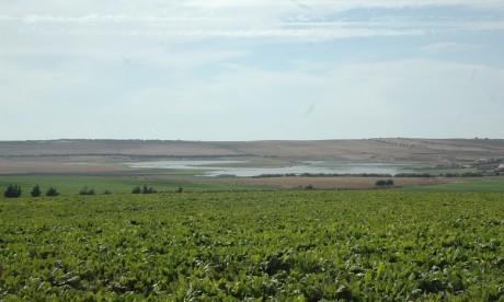 Conseil agricole : Un système d'évaluation du métier en projet chez le ministère