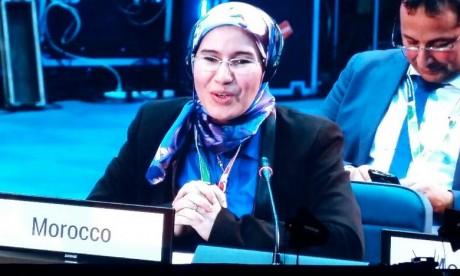 Initiative «Triple S» : Le Maroc organise à New York une réunion ministérielle