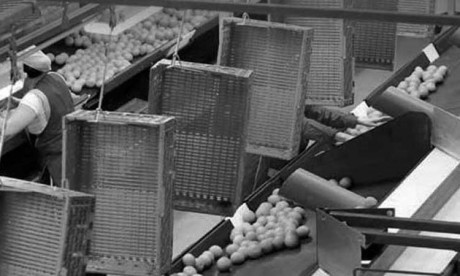 L'État veut mettre de l'ordre  dans le secteur agroalimentaire