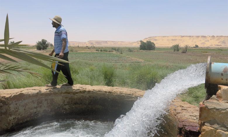 L'agriculture étant le secteur qui utilise le plus d'eau dans la région MENA, il est essentiel d'améliorer la gestion de l'eau dans le secteur agricole afin de stopper la dégradation des sols et de permettre l'adaptation au changement climatique, recommandent la FAO et l'OCDE. Ph. DR