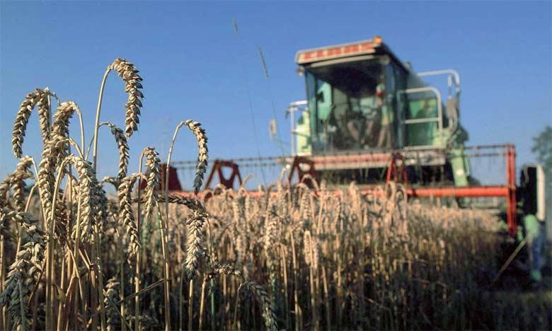 L'Indice FAO des prix des céréales a baissé de 3,7% en mai dernier malgré des perspectives de production  défavorables pour les principales espèces.