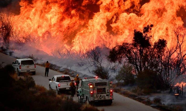 Le «Cranston Fire» est l'un des cinq incendies de forêt importants et non confinés auxquels font face les pompiers à travers la Californie. Ph : DR
